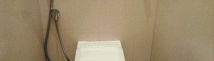 Гигиенический душ для унитаза: способ установки