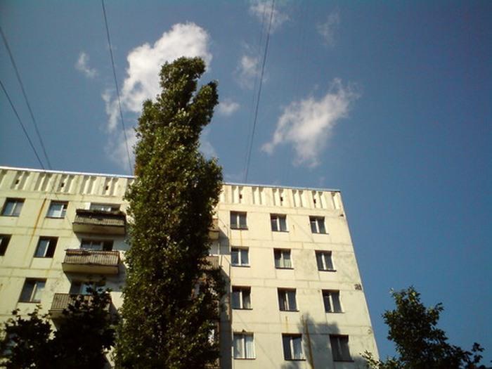 Мужское логово Александра Градского на западе столицы