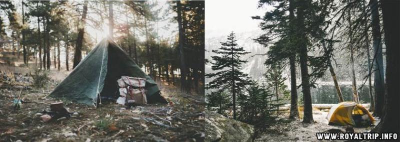 Организовываем поход в лес с ночевкой