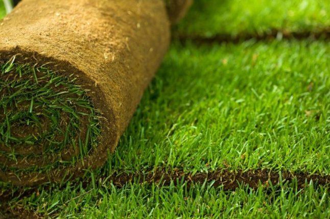 Рулонные газоны для эстетов от производителя
